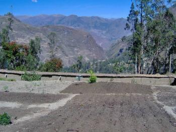 The newly expanded Internado garden, at 8,000 feet