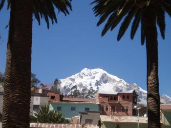 Snow capped mountains and Palm Trees - Sorata